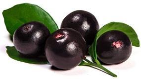 photo-of-fresh-acai-berries.jpg