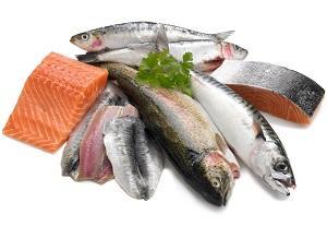 variety-of-fish.jpg
