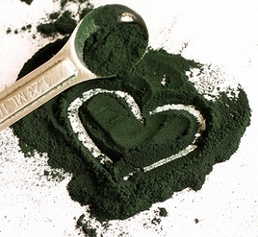 Photo of Spirulina Powder